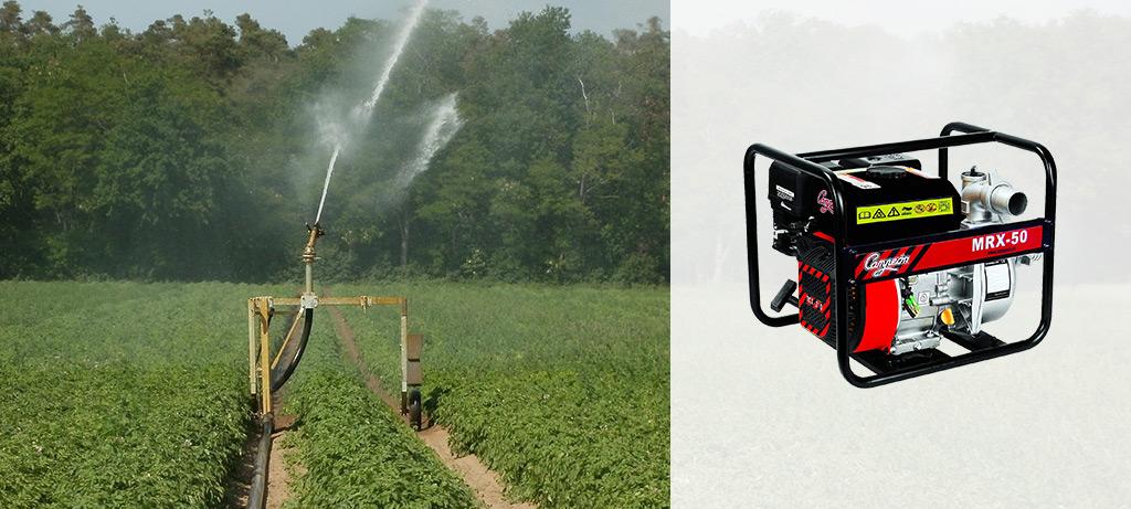 motobombas para riego agricola